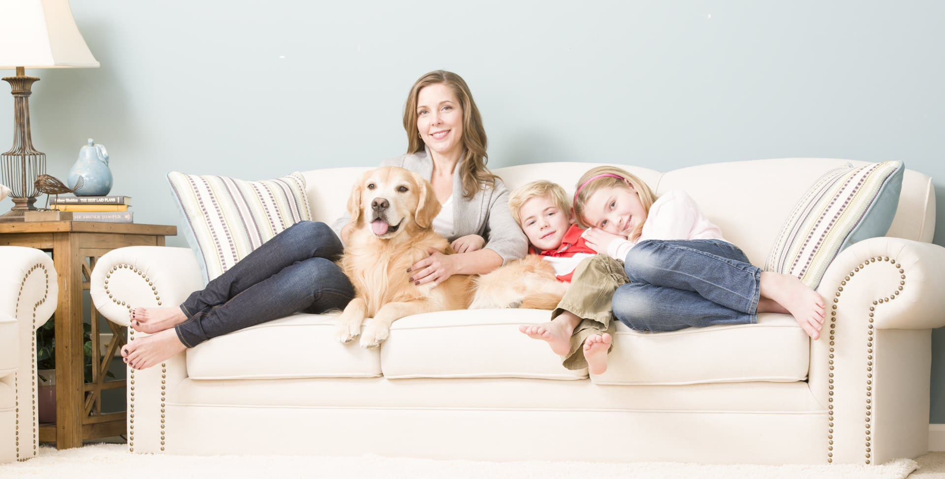 how to clean pet stains on couch